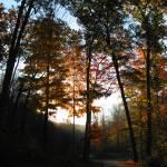"""Middle Haddam Morning"" by juniperlight"