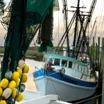 """Shrimp Boat"" by Hansen"