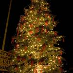 """Christmas tree in Old Sacramento"" by Djpez2001"