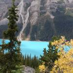 """peyto lake 2"" by photographsaroundtheworld"
