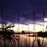 """""""erie marsh twilight rescanned"""" by RichardBaumer"""