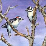"""DOWNY WOODPECKERS"" by bohanart"