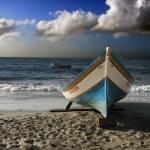 """""""Sea wolf"""" by LuisEduardo"""
