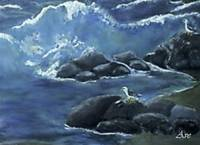 Seagulls on the Rocks by Ave Hurley