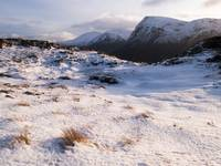 buachaille winter