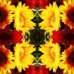 """""""Sunflower KLD5778"""" by JuliusQ75"""