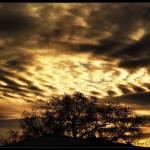 """""""golden sunset"""" by DeniseOBrien"""