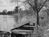 Rowing boat in the Linge, with tree and windmill