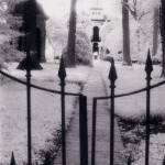"""Missouri Botanical Garden"" by janelinders"