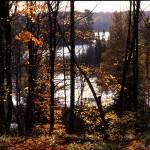 """Tenderfoot Fall Vista"" by RichardBaumer"