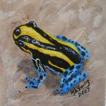 """Yellow & Blue Frog"" by laughingface2"