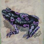 """Black & Purple Frog"" by laughingface2"