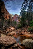 Middle Emerald Pool-Zion National Park