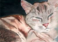 Copy of sleepy cat painting by marsha