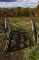 Fence Gate at Triangular Field
