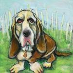 """BassetHound"" by Michellespiziri"