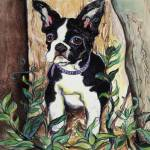 """BostonTerrier"" by Michellespiziri"