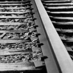 """""""tracks"""" by CameronPatrick"""