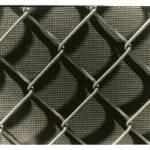 """""""fence"""" by atelliott"""
