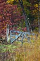 Old Fence in Autumn at Gettysburg