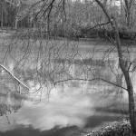 """""""Reflection"""" by mroberts"""