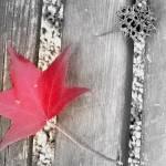 """""""Fall"""" by Liberoliber"""