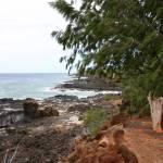 """""""Kauai Landscape"""" by jeorgie"""