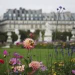 """""""Le Jardin"""" by anewjoy"""