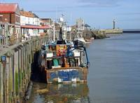 Whitby Fish Quay   (15688-RDA)
