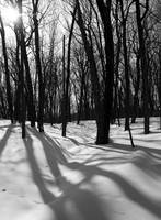 Blue Mounds State Park 01(BW)
