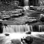 """Rock Garden B&W"" by JosephMLunetto"
