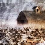 """Prairie Snow"" by K2D2vaca"
