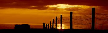 Haybails and fence with sunset