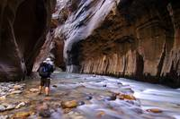 Narrows of Zion