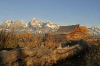 Autumn Barn and Tetons