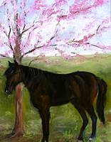 Big Black Horse and A Cherry Tree