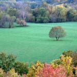 """View From Baptist Hill In Mt Vernon Missouri"" by Ben_Nelson"