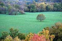 View From Baptist Hill In Mt Vernon Missouri