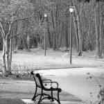 """Eugene Park"" by Shawna"