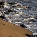 """Lahaina Beach 2"" by Shawna"