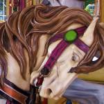 """""""Carousel"""" by longdistgramma"""