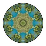 """New Zealand Mandala #1"" by wanderlustproductions"