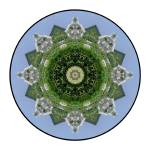 """Mexico Mandala #4"" by wanderlustproductions"