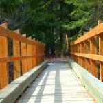 """Taneum Creek Trail Bridge  #1"" by budo"