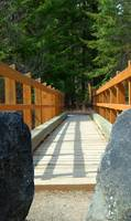 Taneum Creek Trail Bridge  #2