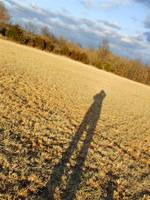 Shadowed Field
