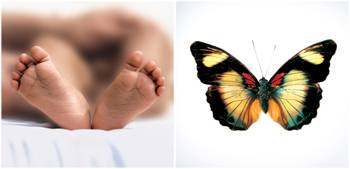 Foot and butterfly