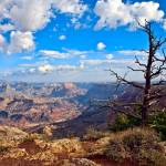 """Grand Canyon East Rim #2"" by cfu1"