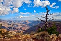 Grand Canyon East Rim #2