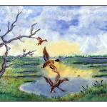 """Mallards Landing"" by SherryHolderHunt"